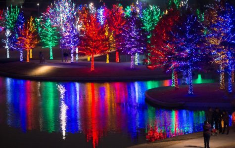 Christmas Lights in the DFW Area