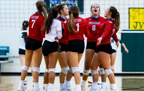 Lady Eagles Are No Match for Lady Lions