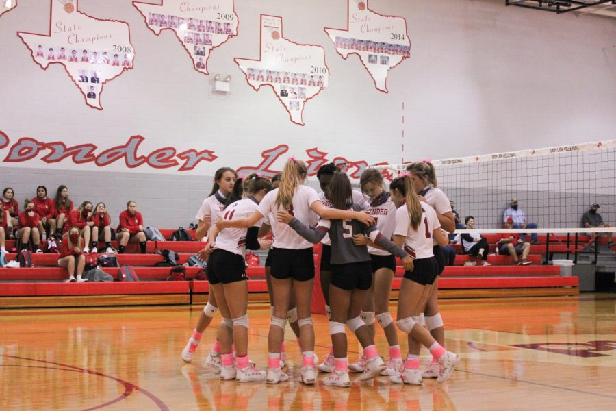 Lady Lions Wallop Wildcats; Bow Out to Lady Bearcats