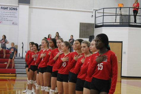 Lady Lions Struggle Against the Yellowjackets
