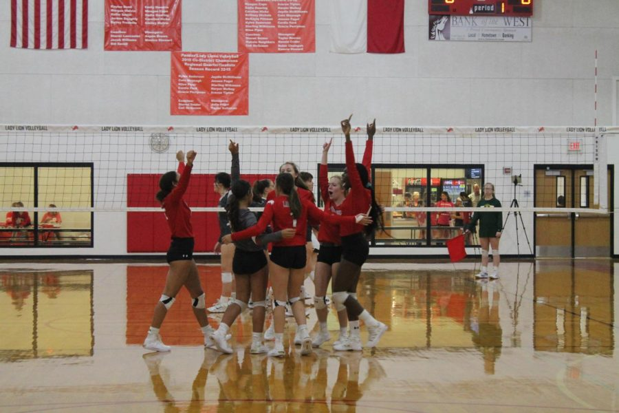 Lady Wildcats Tame the Lady Lions